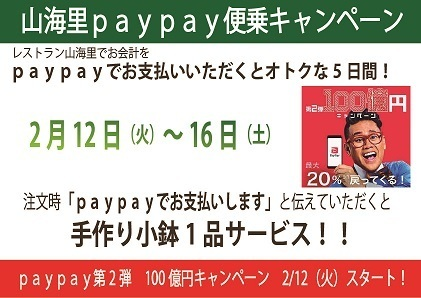 Paypayサービス設定-1.jpg