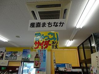 DSC04497.jpg