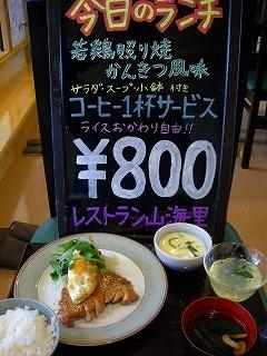 若鶏かんきつ523 003.jpg