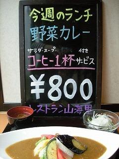野菜カレー8.jpg