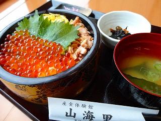 鮭といくらの親子丼 千円 (19).jpg