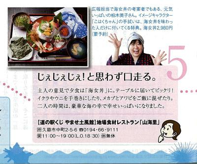 JR大人の休日倶楽部-拡大.jpg