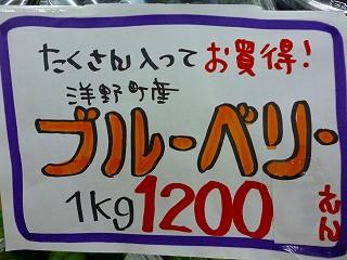 P1010803s-.jpg