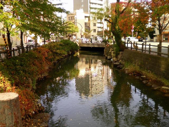 エゾコンMAX 006.jpg